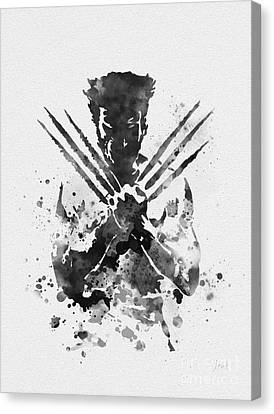 Wolverine Canvas Print by Rebecca Jenkins