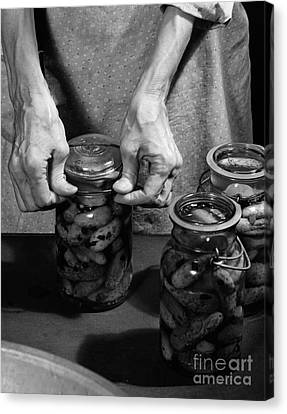 Woman Sealing Pickle Jar, C.1950s Canvas Print by H. Armstrong Roberts/ClassicStock
