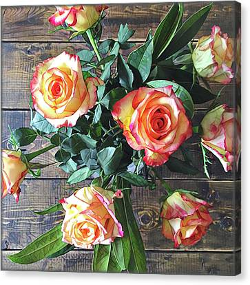 Wood And Roses Canvas Print by Shadia Derbyshire