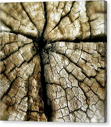 Wood Cross Canvas Print by Tina Valvano