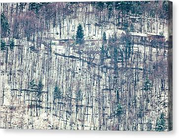 Wood In Winter Canvas Print by Silvia Ganora