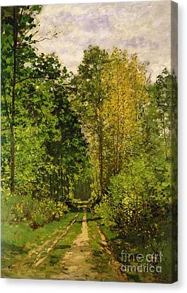 Wooded Path Canvas Print by Claude Monet