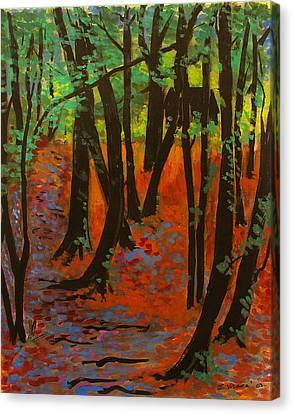 Woodland At Watkins Glen New York Canvas Print by Ethel Vrana