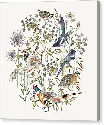 Woodland Edge Birds Placement Canvas Print by Jacqueline Colley
