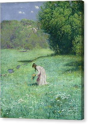 Woodland Meadow Canvas Print by Hans Thoma