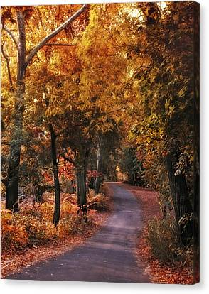 Woodland Path Canvas Print by Jessica Jenney