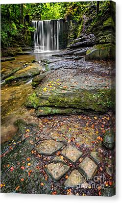 Woodland Waterfall Canvas Print by Adrian Evans