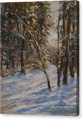 Woods And Snow At Two Below Canvas Print by Jack Skinner