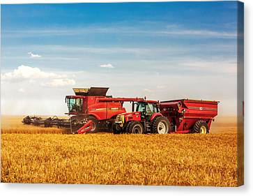 Working Side-by-side Canvas Print by Todd Klassy