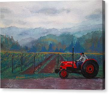 Working The Vineyard Canvas Print by Becky Chappell