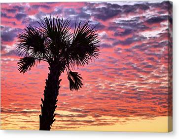 World Famous Panama City Beach Canvas Print by JC Findley
