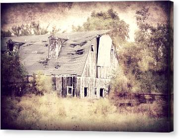 Worn Out Canvas Print by Julie Hamilton