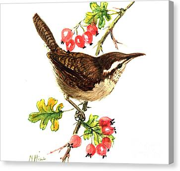 Wren And Rosehips Canvas Print by Nell Hill