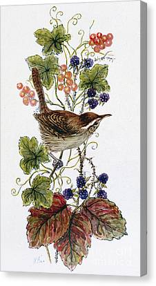 Wren On A Spray Of Berries Canvas Print by Nell Hill