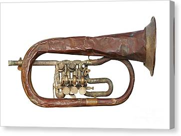 Wrinkled Old Trumpet Canvas Print by Michal Boubin