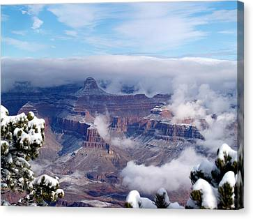 Yavapai Point Winter Canvas Print by Carrie Putz