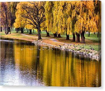 Yellow Autumn Canvas Print by Scott Hovind