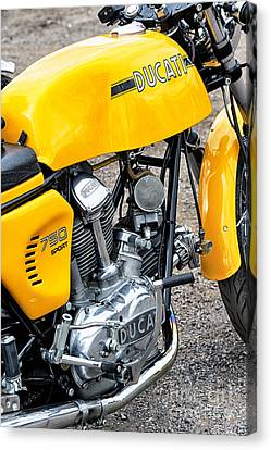Yellow Ducati Canvas Print by Tim Gainey