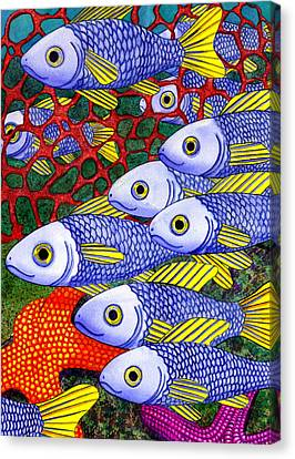 Yellow Fins Canvas Print by Catherine G McElroy
