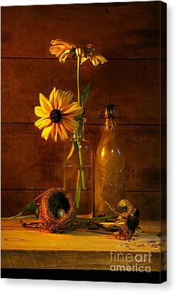 Yellow Flower Still Life Canvas Print by Sandra Cunningham