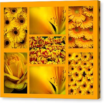 Yellow Flowers Collection. Polyptych Canvas Print by Jenny Rainbow