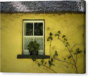 Yellow House County Clare Ireland Canvas Print by Teresa Mucha