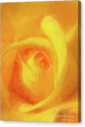 Yellow Rose Floral Macro Canvas Print by Mona Stut