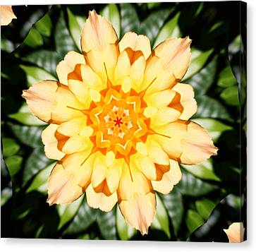 Yellow Rose Kaleidoscope  Canvas Print by Cathie Tyler