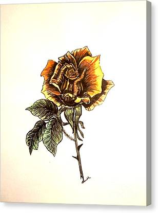 Yellow Rose Canvas Print by Nancy Rucker