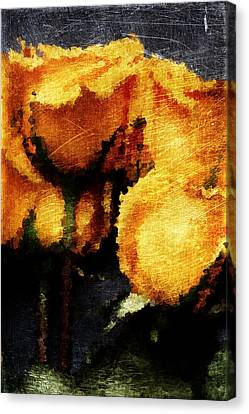 Yellow Roses Canvas Print by Andrea Barbieri