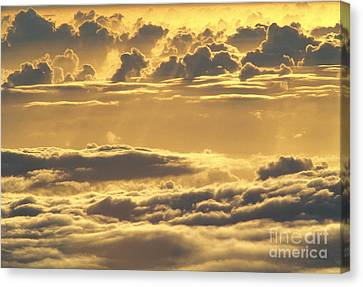 Yellow Sunset Canvas Print by Carl Shaneff - Printscapes