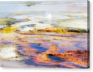Yellowstone Abstract II Canvas Print by Teresa Zieba