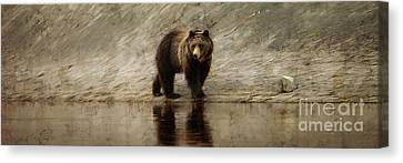 Yellowstone Grizzly Canvas Print by Wildlife Fine Art