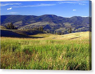 Yellowstone Landscape 3 Canvas Print by Marty Koch