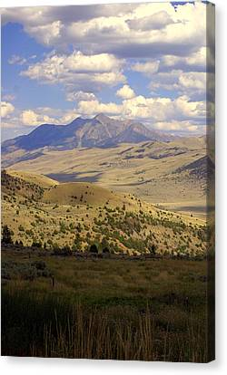 Yellowstone View Canvas Print by Marty Koch