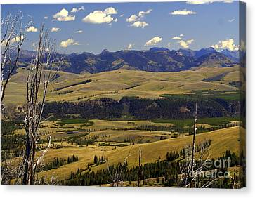 Yellowstone Vista 2 Canvas Print by Marty Koch