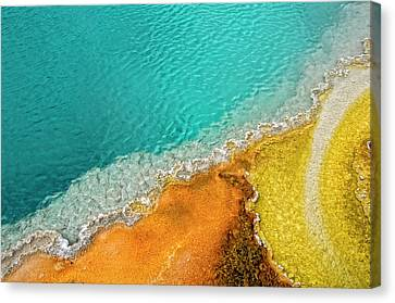 Yellowstone West Thumb Thermal Pool Close-up Canvas Print by Bill Wight CA
