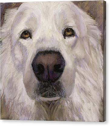 Yes I'm A Great Pyrenees Canvas Print by Billie Colson