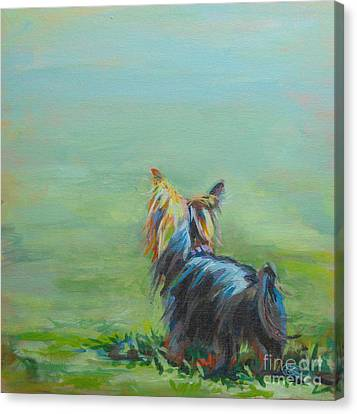 Yorkie In The Grass Canvas Print by Kimberly Santini