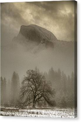 Yosemite In The Winter Canvas Print by Connie Cooper-Edwards
