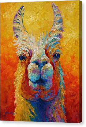 You Lookin At Me Canvas Print by Marion Rose