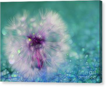 Your Wish Will Come True Canvas Print by Krissy Katsimbras
