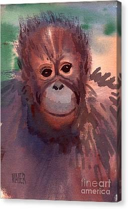 Young Orangutan Canvas Print by Donald Maier