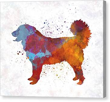 Yugoslavian Shepherd Dog In Watercolor Canvas Print by Pablo Romero
