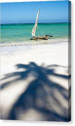 Zanzibar Beach Canvas Print by Adam Romanowicz