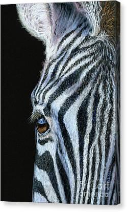 Zebra Detail Canvas Print by Sarah Batalka