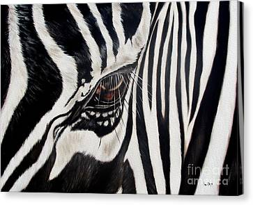 Zebra Eye Canvas Print by Ilse Kleyn