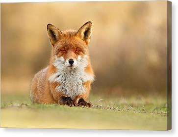 Zen Fox 3.0 Canvas Print by Roeselien Raimond
