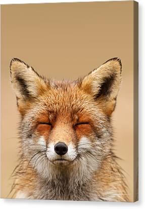 Zen Fox Series - Smiling Fox Portrait Canvas Print by Roeselien Raimond