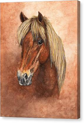 Ziggy Canvas Print by Kristen Wesch